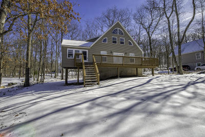 Masthope Single Family Home For Sale: 319 W Lakeview Rd