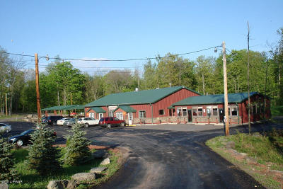 Wayne County Commercial For Sale: 2136 Lake Ariel Hwy