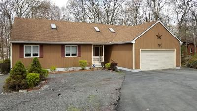 Hemlock Farms Single Family Home For Sale: 120 Pommel Drive
