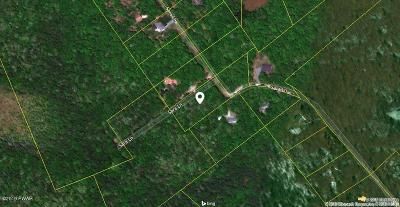 Residential Lots & Land For Sale: Lot 24 Sara Ln