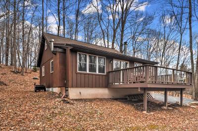 Lake Ariel Single Family Home For Sale: 4 Big Spring Ln