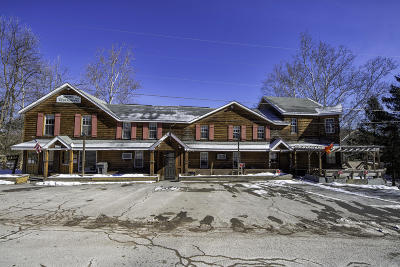 Commercial For Sale: 188 Scenic Dr