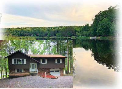Lake Ariel Single Family Home For Sale: 1158 Beaver Lake Dr