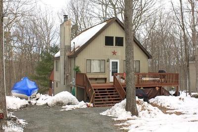 Lackawaxen Single Family Home For Sale: 113 Pebble Rock Rd