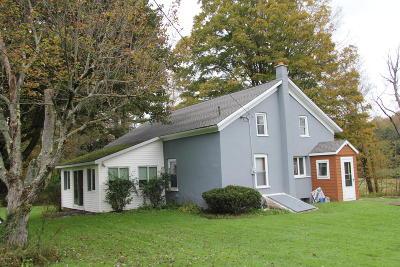 Waymart Single Family Home For Sale: 1969 Creek Dr