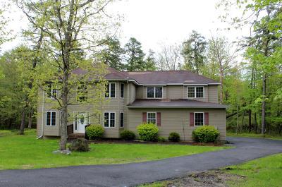 Pike County Single Family Home For Sale: 500 Kili Way