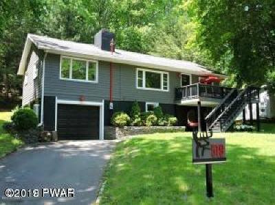 Shohola Single Family Home For Sale: 519 Twin Lakes Rd
