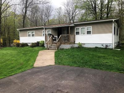 Honesdale Single Family Home For Sale: 150 Cadjaw Pond Rd