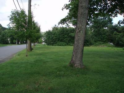 Residential Lots & Land For Sale: LOT 600 W High St