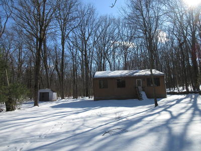 Dingmans Ferry Single Family Home For Sale: Ivy Trl
