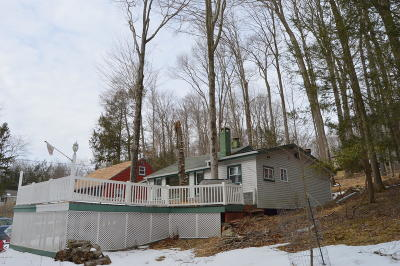 Lake Ariel Single Family Home For Sale: 17 Lacawac Rd