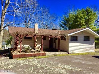Dingmans Ferry Single Family Home For Sale: 101 Poplar St