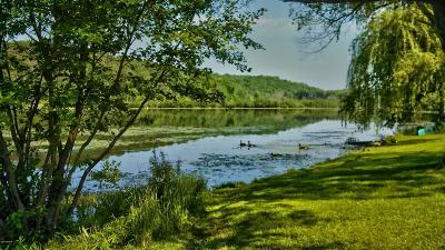 Wayne County Single Family Home For Sale: 550 Johnson Ln