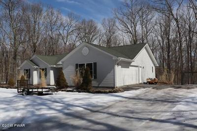 Masthope Single Family Home For Sale: 164 Rainbow Dr