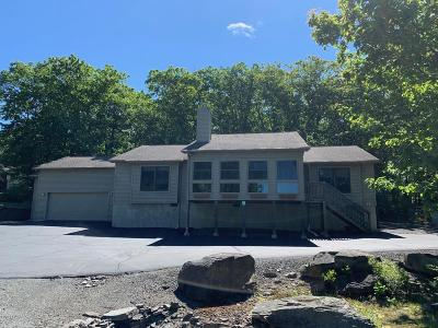 Lords Valley PA Single Family Home For Sale: $290,000