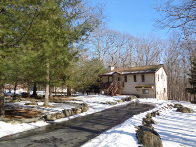 Lackawaxen Single Family Home For Sale: 258 Upper Independence Dr