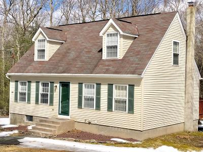Milford Single Family Home For Sale: 376 Raymondskill Rd
