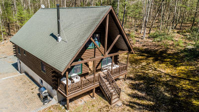 Narrowsburg NY Single Family Home For Sale: $349,900