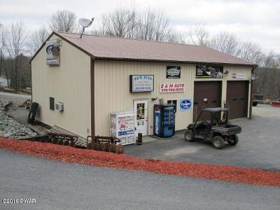 Lake Como PA Commercial For Sale: $99,999