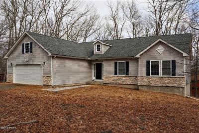 Masthope Single Family Home For Sale: 250 Upper Independence Dr