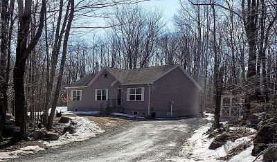 Pike County Single Family Home For Sale: 153 Split Rock Rd