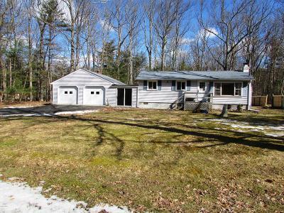 Dingmans Ferry Single Family Home For Sale: 110 Buckhorn Trl