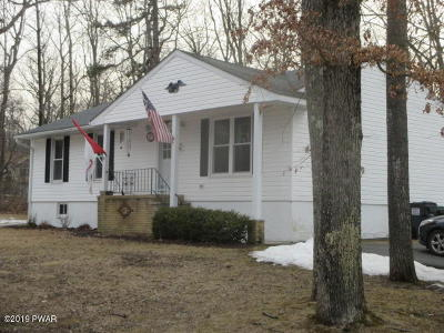 Single Family Home For Sale: 100 Mercury Ct