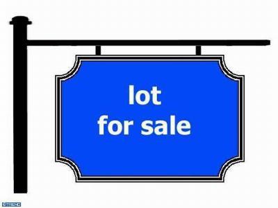 Ellendale Residential Lots & Land ACTIVE: Washington Avenue