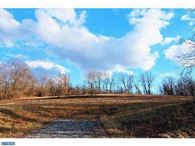 Residential Lots & Land ACTIVE: Lot 2 Haycreek Road