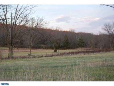 Birdsboro Residential Lots & Land ACTIVE: 625 Ben Franklin Highway