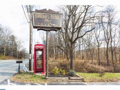 Chadds Ford PA Commercial ACTIVE: $1,000,000
