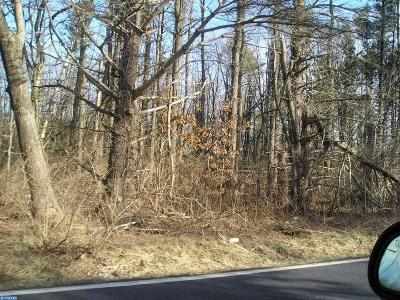 PA-Bucks County Residential Lots & Land ACTIVE: 153&151 Gruversville Road