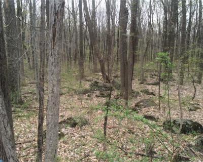 PA-Bucks County Residential Lots & Land ACTIVE: E Sawmill Road