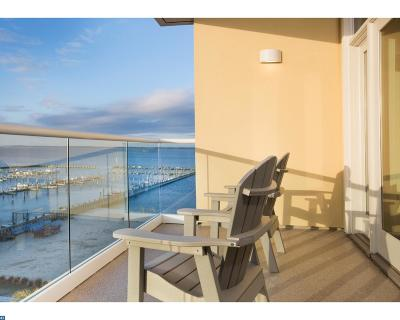 Dewey Beach Condo/Townhouse ACTIVE: 1301 Coastal Highway #456