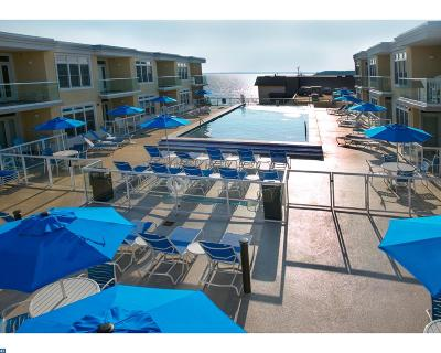 Dewey Beach Condo/Townhouse ACTIVE: 1301 Coastal Highway #252