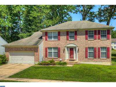 DE-New Castle County Single Family Home ACTIVE: 409 Douglas D Alley Drive