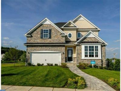 Doylestown Single Family Home ACTIVE: 307 Mystic View Circle
