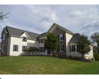 Phoenixville Single Family Home ACTIVE: 49 Goldfinch Circle