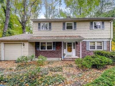 Lawrenceville Single Family Home ACTIVE: 44 Pineknoll Drive