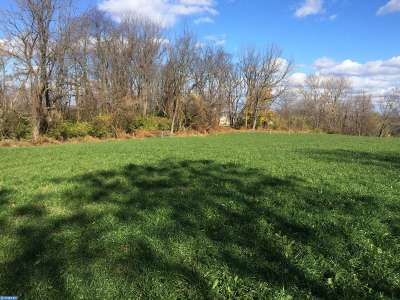 Sinking Spring Residential Lots & Land ACTIVE: Lot 2 Heffner Road