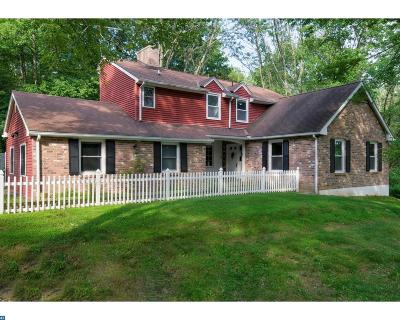 Hopewell Single Family Home ACTIVE: 203 Hopewell Amwell Road