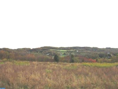 Leesport PA Residential Lots & Land ACTIVE: $269,000