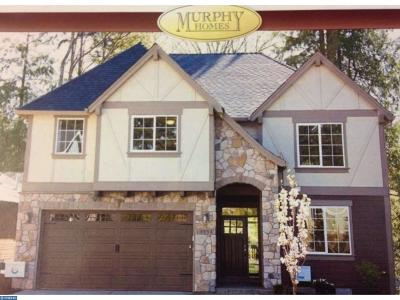 Newtown Square Single Family Home ACTIVE: 38 Runnymeade Drive
