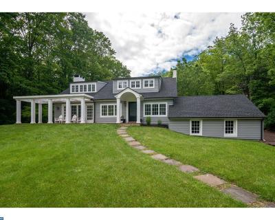 Tinicum Single Family Home ACTIVE: 81 Ridge Valley Road