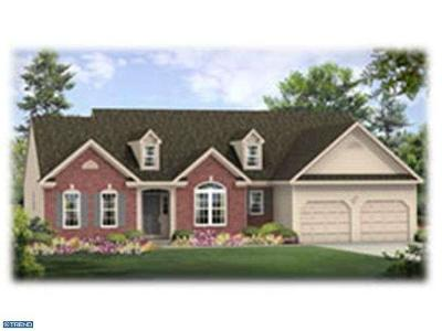 Mohnton Single Family Home ACTIVE: 003 Sell Road