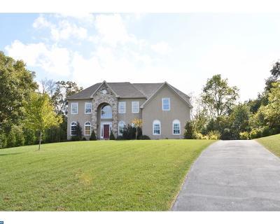 Coatesville Single Family Home ACTIVE: 28 Michael Court