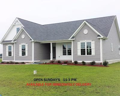 Harrington Single Family Home ACTIVE: 132 Lucky Estates Drive