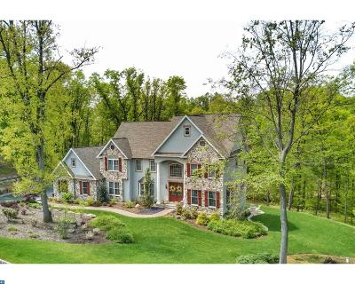 Mohnton Single Family Home ACTIVE: 33 Stonehill Drive
