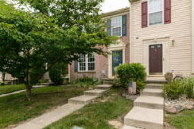 Woodbury Condo/Townhouse ACTIVE: 168 Plymouth Drive