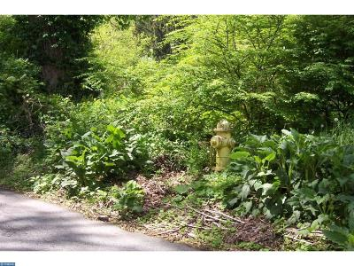 Coatesville Residential Lots & Land ACTIVE: 3 Mount Carmel Road